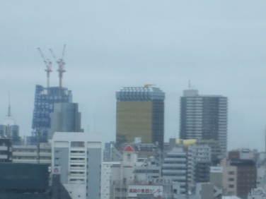 2009_09020005
