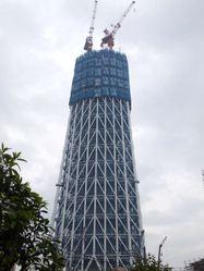 2009_11240026
