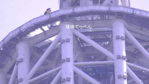 2012_01100022
