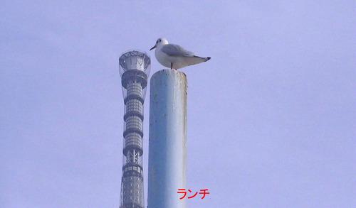 2012_01180062
